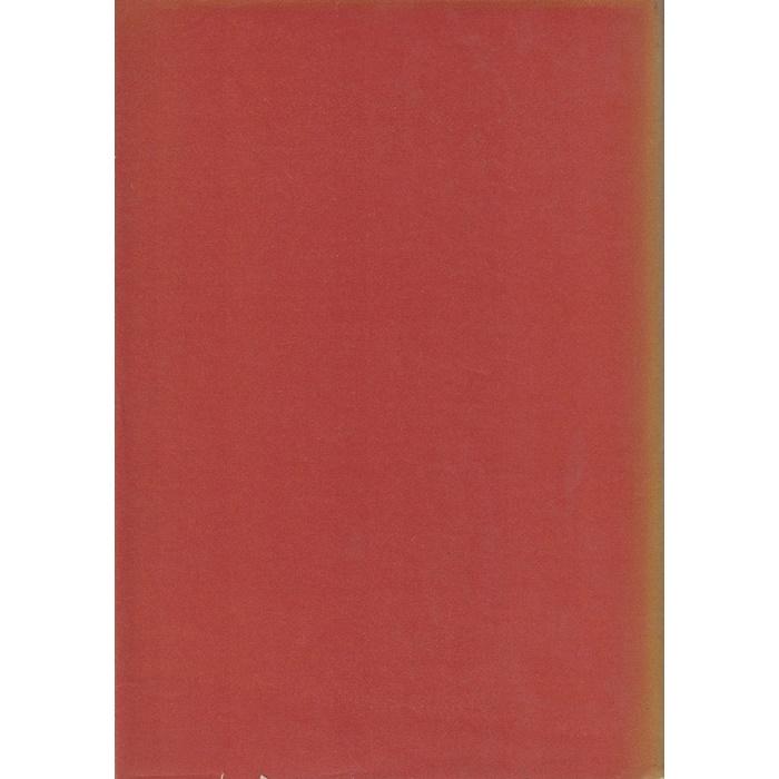 Antonio Gramsci - Briefe aus dem Kerker