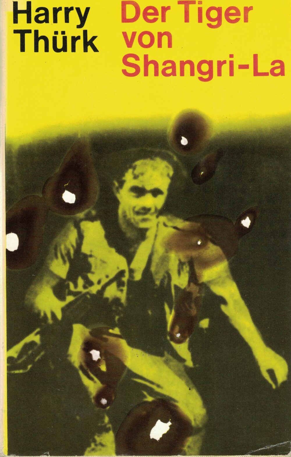 Harry Thürk - Der Tiger von Shangri-La - Roman