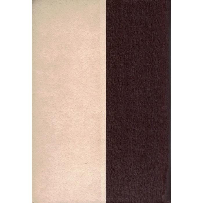 N. G. Tscheryschewki - Ausgewählte philosophische Schriften