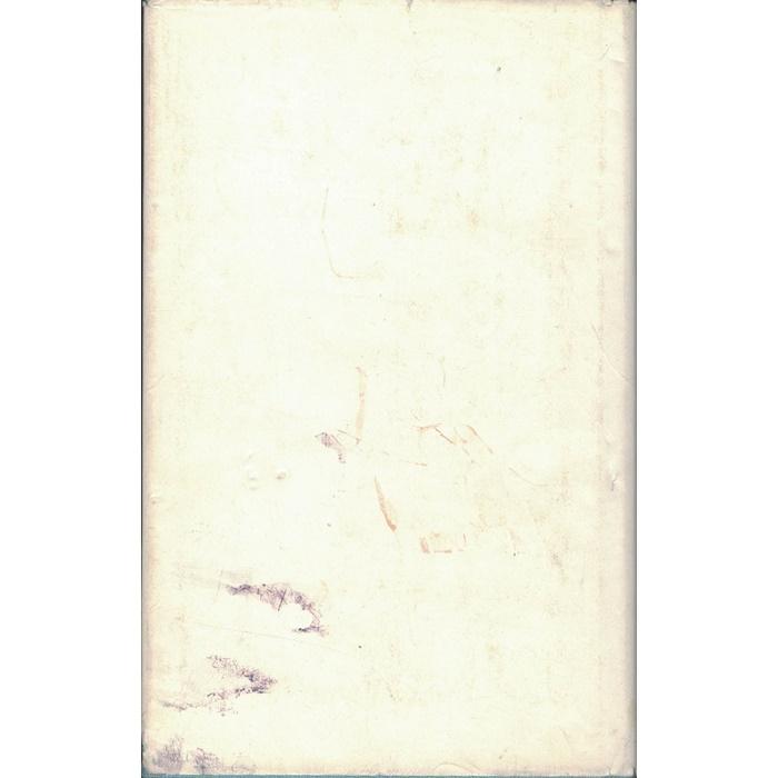 Gustave Flaubert, Madame Bovary - Roman